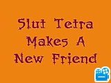 Tetra_s_New_Friend_.flv